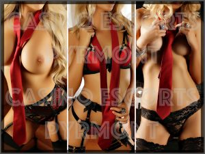CASINO ESCORTS PYRMONT – ELITE COMPANIONS